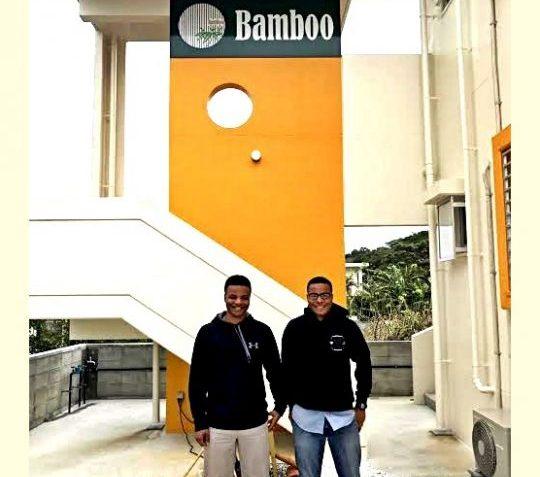 bamboo-5