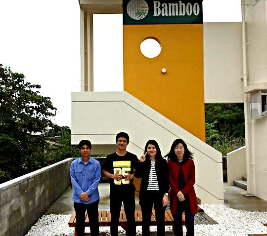 bamboo8-2