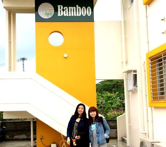 Bamboo-13