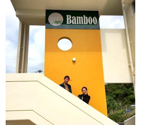 Bamboo12