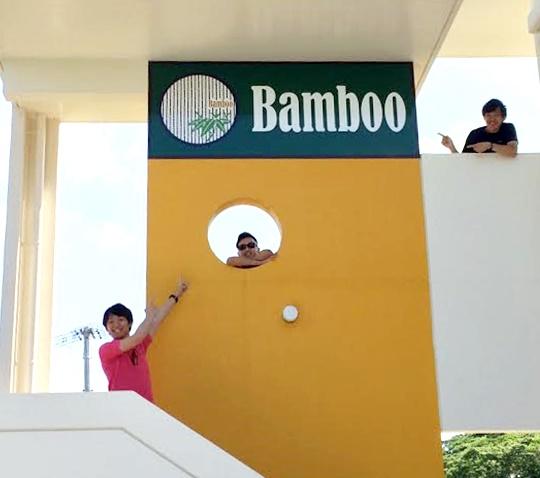 bamboo-21