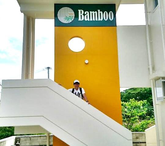 Bamboo-24