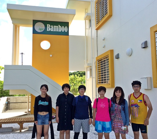 bamboo-28