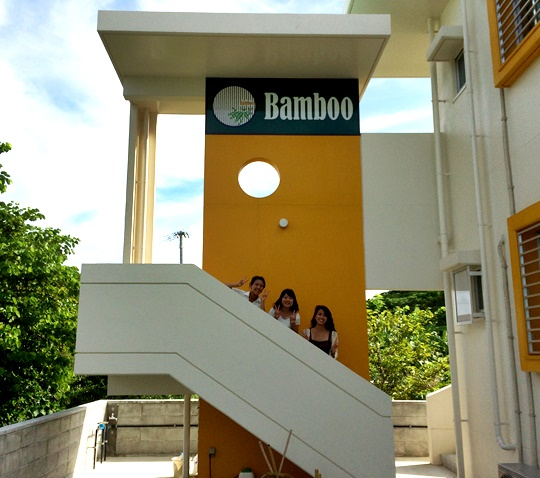 Bamboo-44